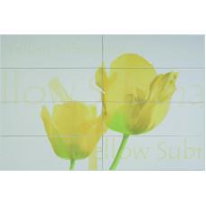 Conjunto Tulipan Beige